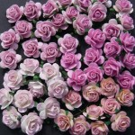 WOC 50 Pink Tone Roses .75in Set A
