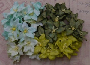 WOC 40 Mixed Green Toned Lily Flowers FS-00200