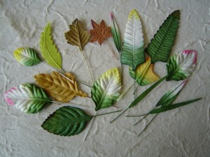 WOC 50 Mixed Leaves LL-00001